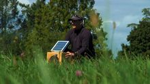 SUN BOXES (Maudslay Park Grass).jpg
