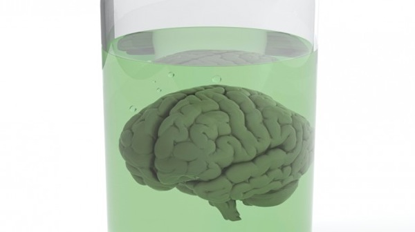 Brain in jar via Shutterstock 615x345